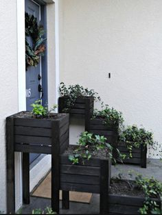 While this one is probably inspired from the wooden ladder, that's why each tier resembles to the wooden ladder step. We painted them with some darker stain which is effective in preventing the plants from bugs and flies as well. Still you would be having the necessary pollination.