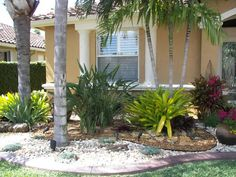 Inexpensive Backyard Ideas  Brilliant Inexpensive Landscaping - Florida landscaping ideas for front yard