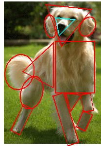 How to Draw a Dog Shapes over photo