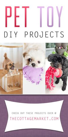 Looking for the perfect gift for your pet? Try making one of these DIY, easy, homemade pet toy that your dog or cat will be begging for. | The Secret Life of Pets | In Theaters July 8