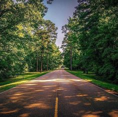 Natchez Trace Parkway in summer. Natchez Trace, Spring Time, Freedom, Scenery, Wheels, Hiking, Country Roads, Summer, Travel