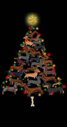 Christmas Dachshund Clothes, Dachshund Art, Funny Dachshund, Dachshund Puppies, Pet Dogs, Daschund, Pets, Christmas Dog, Vintage Christmas