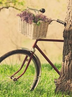 Used to sit this bike :-), quite romantic :-)