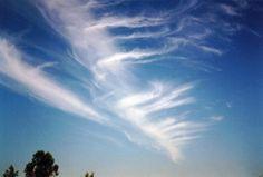 Meteo Beauty: Clouds 101: Cirrus fibratus (Ci fib)