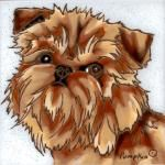 Brussels Griffon Red tile