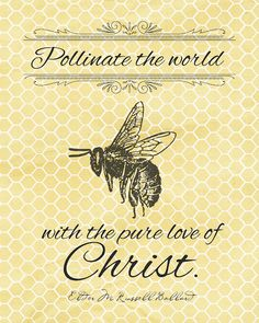 Pollinate the world with the pure love of Christ.  Elder M Russel Ballard Oct 2012