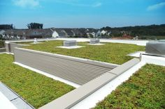 LiveRoof Green Roofs Help Montgomery County Public Schools Set the Gold Standard For Green Schools Green Roof System, Green School, School Sets, Cool Roof, Montgomery County, Public School, Green Roofs, Square Feet, Rooftop