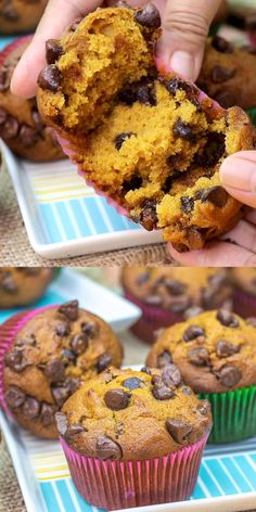 I like to serve these muffins while still warm so the gooey chocolate practically melts in your mouth. Super-yummy and moist Pumpkin Chocolate Chip Muffins!