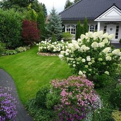 ideas for life House Landscape, Landscape Design, Garden Design, Hydrangea Landscaping, Landscaping Plants, Front House Landscaping, Outdoor Patio Designs, Garden Tool Set, Porch Garden