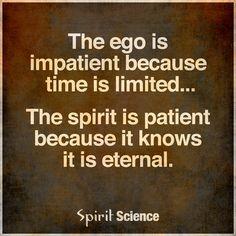 No Ego. No Problem.