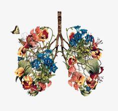 La mort vu dune façon plus armonieuse: Art Inspo, Kunst Inspo, Inspiration Art, Art And Illustration, Art Du Croquis, Cartoon Flowers, Medical Art, Anatomy Art, Human Anatomy