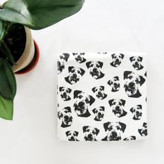 Schnauzer Print Organic Cotton Newborn Swaddle Set, Optional Baby Hat, Head Bow And Leggings, Dog Themed Baby Shower Gift Ideas For Girl Boy Custom Baby Gifts, New Baby Gifts, Baby Shower Themes, Baby Shower Gifts, Baby Comforter, Baby Leggings, Baby Swaddle, Baby Prints, Baby Hats