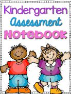 Kindergarten Assessment Notebook.pdf - Google Drive