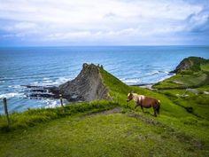 Reserva de la Biosfera de Urdaibai  Guipuzcoa Places To Go, Mountains, Nature, Travel, Horses, Countries, Pictures, Naturaleza, Viajes