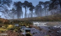 trough bowland - Google Search -getty images  john lever Places To Visit, Country Roads, River, Mountains, Wallpaper, Nature, Image, Collection, Google Search