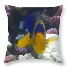 Throw Pillow featuring the photograph Royal Angelfish Closeup by Johanna Hurmerinta