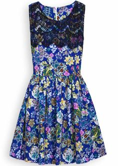 Blue Contrast Lace Sleeveless Floral Dress