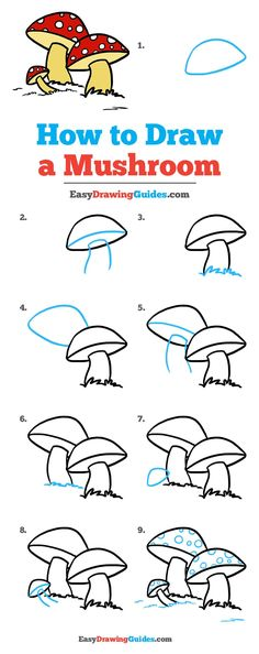 Learn How to Draw a Mushroom: Easy Step-by-Step Drawing Tutorial for Kids and Beginners. #Mushroom #DrawingTutorial #EasyDrawing See the full tutorial at https://easydrawingguides.com/how-to-draw-a-mushroom/.