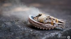 The science of smudging. Not only does it clear the air of negative energy but harmful bacteria as well!
