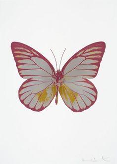 Framed Souls I - Oriental Gold/Blind Impression/Chilli Red 2010 (Sig Ltd Ed of by Damien Hirst Butterfly Frame, Butterfly Painting, Butterfly Print, Damien Hirst Paintings, Paper Animals, Framed Prints, Art Prints, Animal Prints, Abstract Wall Art