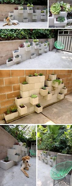 Love this cinder block garden!  Could totally use on back patio... if I could wrap all the ones that stick out in bubble wrap so that Ro doesn't hit his head...