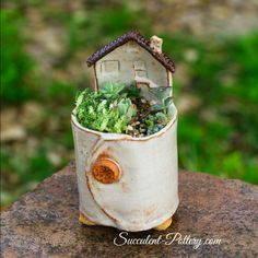 From succulent pottery.com