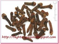 Home > Back pain from heavy backpacks > Health benefits of cloves Cloves and their essential aromatic oil have immense health benefits and therapeutic values. The binomial name of clove… Cloves Benefits, Remedies For Tooth Ache, Top 10 Home Remedies, Natural Remedies, Clove Essential Oil, Hamster Eating, Testosterone Booster, Increase Testosterone, Nail