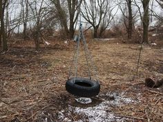 Tire swing slams into man's face, kills him