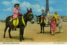 There are some things southerners just don't understand. Here's our list of the things only Northerners living down south will get. Blackpool Rock, Blackpool Beach, Uk Stamps, British Seaside, Colouring Pics, Down South, Color Photography, Donkey, Old Pictures