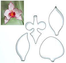 bildergebnis f r orchideen bl tter gezeichnet orchde und co pinterest bl tter und zeichnen. Black Bedroom Furniture Sets. Home Design Ideas