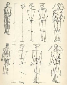Instruction: Willy Pogany's Drawing Lessons – AnimationResource… – Serving the… - figure drawing Human Anatomy Drawing, Form Drawing, Drawing Studies, Gesture Drawing, Anatomy Art, Life Drawing, Figure Drawing Tutorial, Figure Drawing Models, Character Sketches