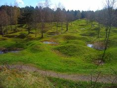 Battlefield Verdun, France.  Holes still left from WW One shelling.  The fort and surrounding area is haunting. The town is truly beautiful.