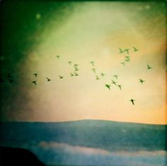 """offthesky & man watching the stars - """"afar, farewel"""" : ambient, drone, contemporary classical"""