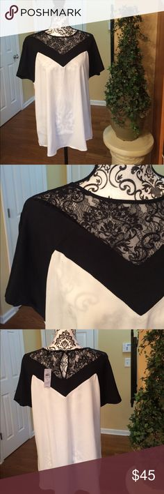 Ann Taylor black & cream top w/lace. Large. NWT Gorgeous Ann Taylor silky blouse, cream with black & lace.  New with tags.   Large Ann Taylor Tops Blouses