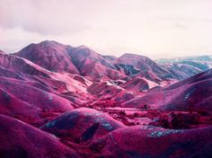 richard mosse the enclave - Google Search