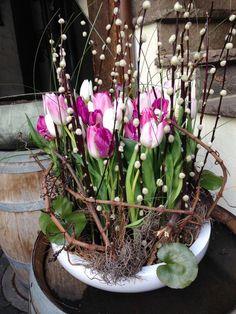 de flores Mit Alpenveilchen With cyclamen Easter Flower Arrangements, Easter Flowers, Spring Flowers, Floral Arrangements, Deco Floral, Arte Floral, Floral Design, Church Flowers, Decoration Table
