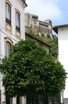 Castle of Leiria, up in the hill ,Portugal