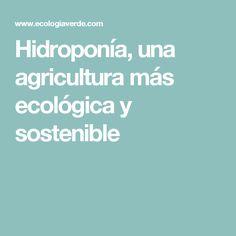 Hidroponía, una agricultura más ecológica y sostenible