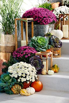 13 Creative Ways to Decorate with Mums for the Best Fall Display on Your Block Pumpkin Display, Autumn Display, Fall Displays, Purple Mums, Fall Mums, Fall Containers, Diy Fall Wreath, Autumn Garden, Fall Home Decor