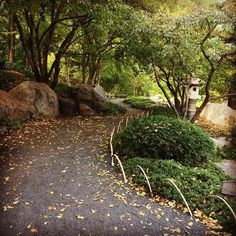 Fall in the Japanese Garden
