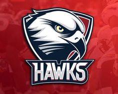 Resultado de imagen para hawk logo