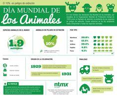 infografía de animales en la granja - Google Search