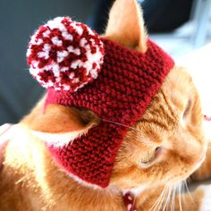 Pom Pom Cat Hat Red and White by bitchknits on Etsy, $13.00 (must learn how to crochet this for my cat Alife - he is always cold!)