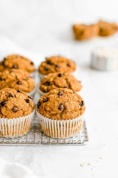 Healthy Pumpkin Chocolate Chip Oatmeal Muffins -- only 128 calories with lots of pumpkin spice! SO moist & tender! Plus they're really easy to make! These are definitely the BEST pumpkin muffins I've ever had! ♡ clean eating greek yogurt pumpkin oatmeal muffins. pumpkin oatmeal muffins with weight watchers points. no sugar pumpkin oatmeal muffins with whole wheat and gluten free options. low calorie sugar free pumpkin oatmeal muffins. Pumpkin Oatmeal Muffins, Pumpkin Chocolate Chip Muffins, Chocolate Chip Oatmeal, Clean Eating Pumpkin Muffins, Low Calorie Muffins, Healthy Muffins, Sin Gluten, Crockpot, Donuts