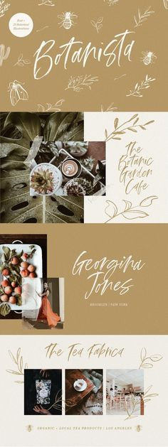 Botanista is a casual script font coming with handmade botanical illustrations. It's the perfect fit for festive projects, logos, printed quotes, lovely Handwritten Fonts, New Fonts, Typography Inspiration, Graphic Design Inspiration, Color Inspiration, Botanical Illustration, Illustration Art, Illustrations, Uppercase And Lowercase Letters