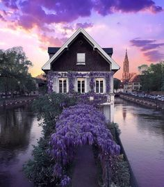 Strasbourg France Photo by Check his feed out for more by bihterelis Purple Home, Strasbourg, Fachada Colonial, Photo Instagram, Instagram Posts, Shades Of Violet, France Photos, Purple Reign, Purple Aesthetic