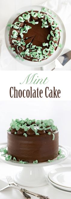 If you love #mint and #chocolate then this cake is a MUST MAKE! {Video tutorial} #iambaker #cakedecorating #baking