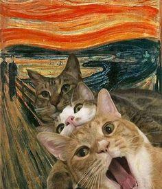Cat Aesthetic, Cat Wallpaper, Animal Wallpaper, Funny Animal Pictures, Funny Art, Surreal Art, Crazy Cats, Cat Art, Oeuvre D'art