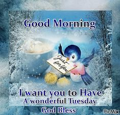 Good Morning Dear Friends ❤️ Sending love and hugs across the ocean ❤️ I love you ALL ❤️ Annie Bluebird x o x o God bless you with a wonderful Tuesday!!!!