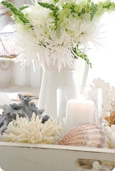 display shells & corals in beautiful big glass ginger jars, candles, sit on sideboard and displays under glass dome on coffee/ side tables in reception.
